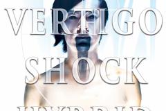 Vertigo Shock Hybrid